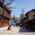 中国冒険記②~昆明老街は多肉天国だった~